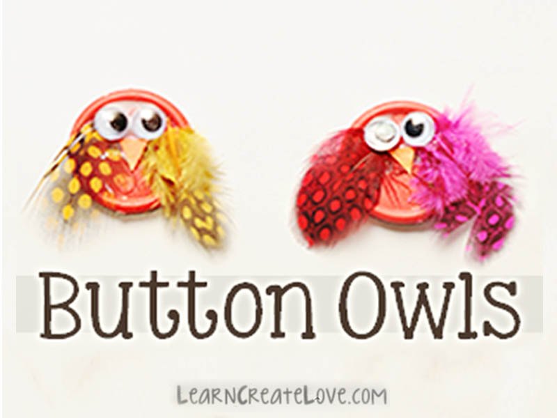 Button Owls Friendship girl scout Swap