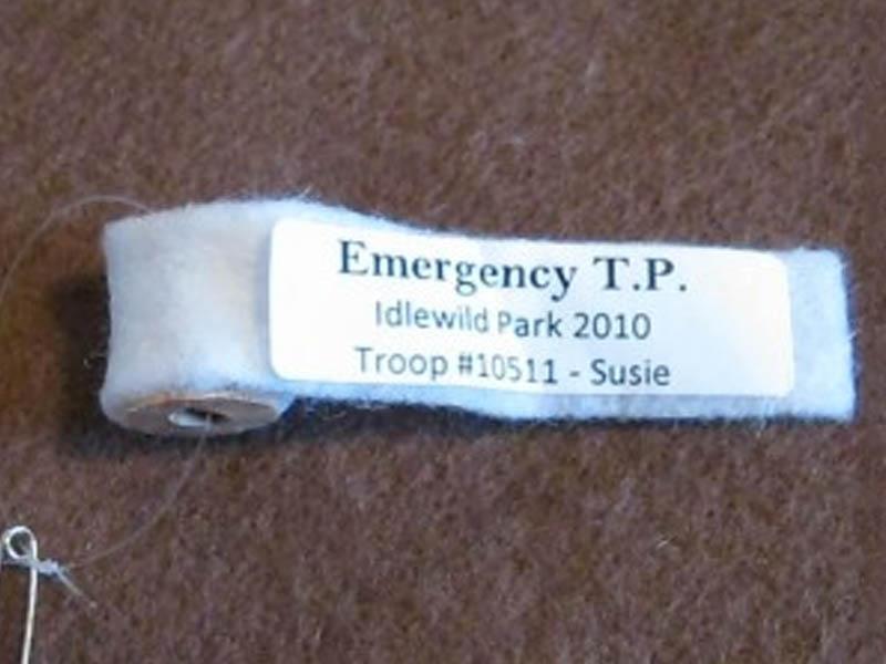 Emergency TP Friendship Swap