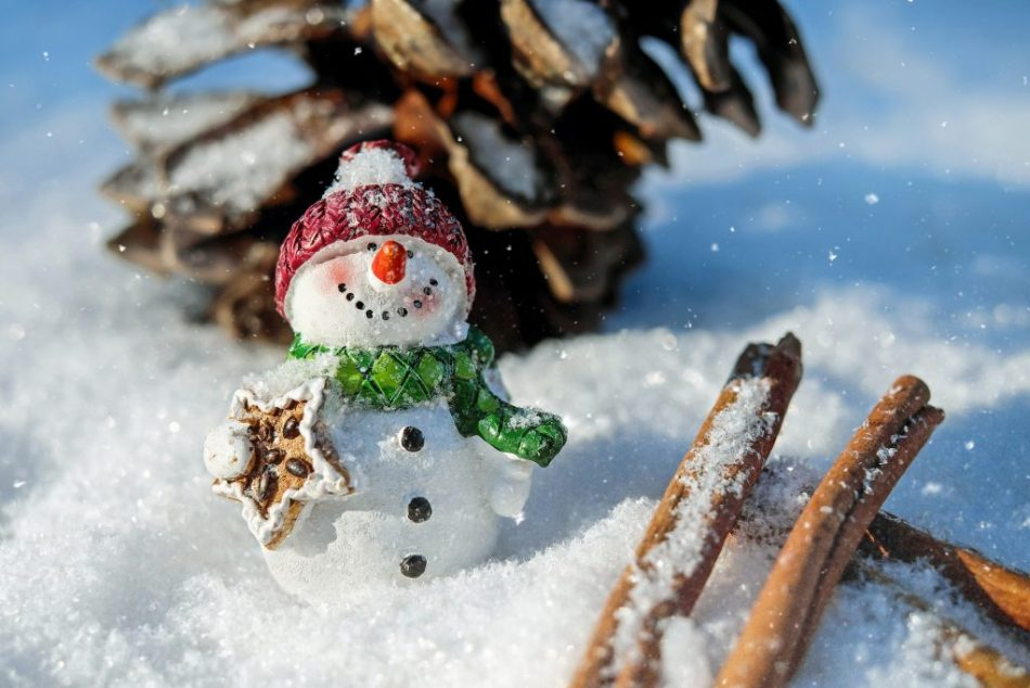 girl scout winter and christmas swaps ideas